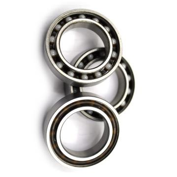 SKF Ball Bearing 16003 16004 16005 16006 16007 16008 16009